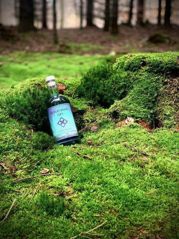 Bøgevang Gin på græs